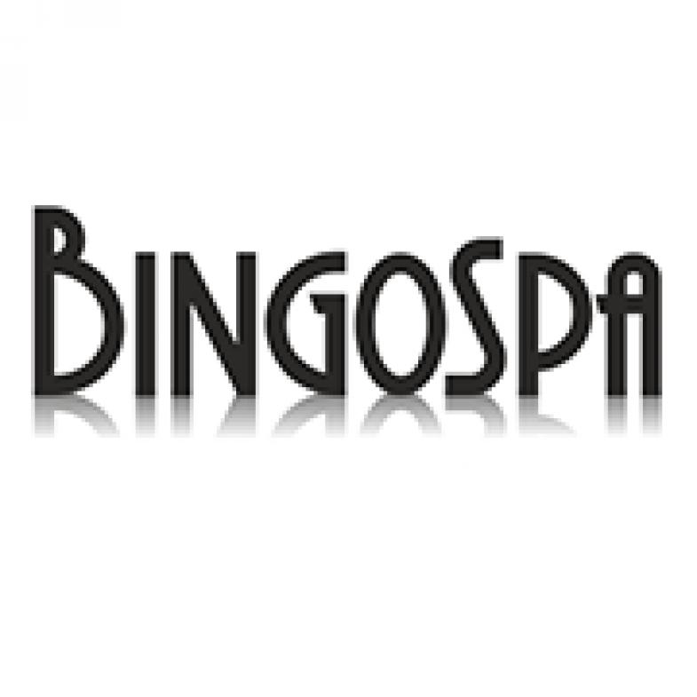 Logo BINGOSPA